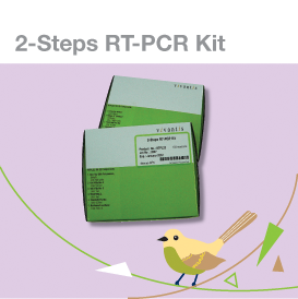 2 steps RT-qPCR kit